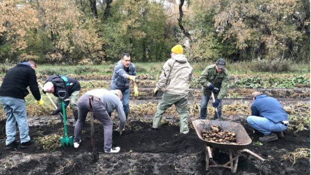 امشروع المبادرة الزراعيّة انطلق العام الماضي 2018 في وينيبيغ لمساعدة اللاجئين اليزيديّين/ Pierre Verriere/Radio-Canada