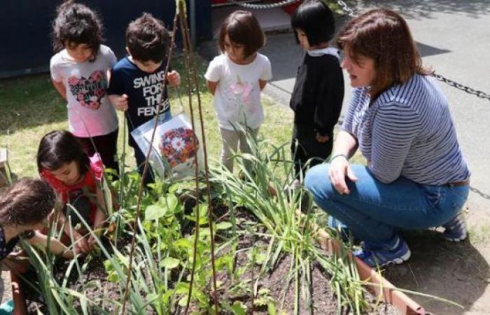 فانكوفر: الحفاظ على البيئة يبدأ من المدرسة